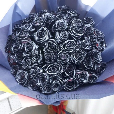 101_black_rose_roza.lutsk