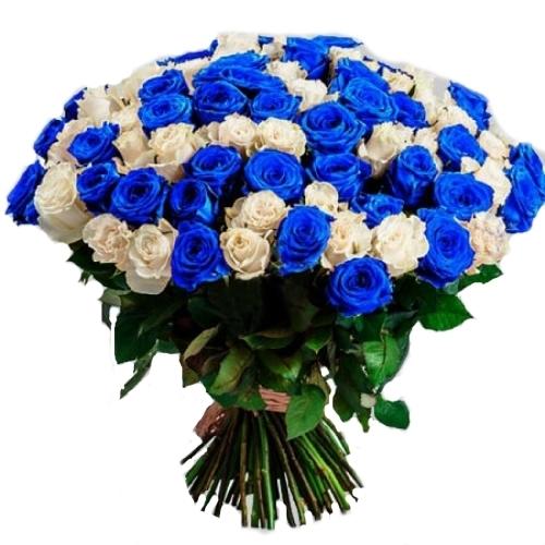 101 біла і синя троянда фото букета