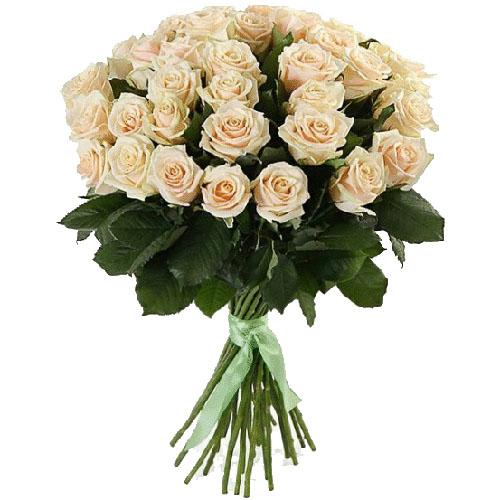 33 кремові троянди букет