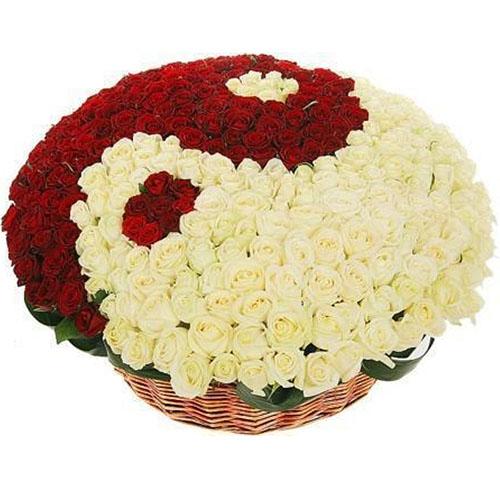 """101 біла та червона троянда """"Інь-Ян"""" у кошику"""